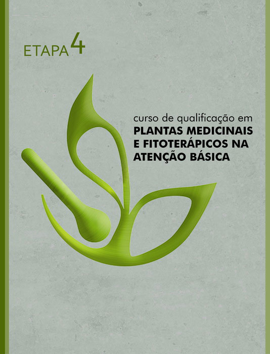 capa ETAPA 4