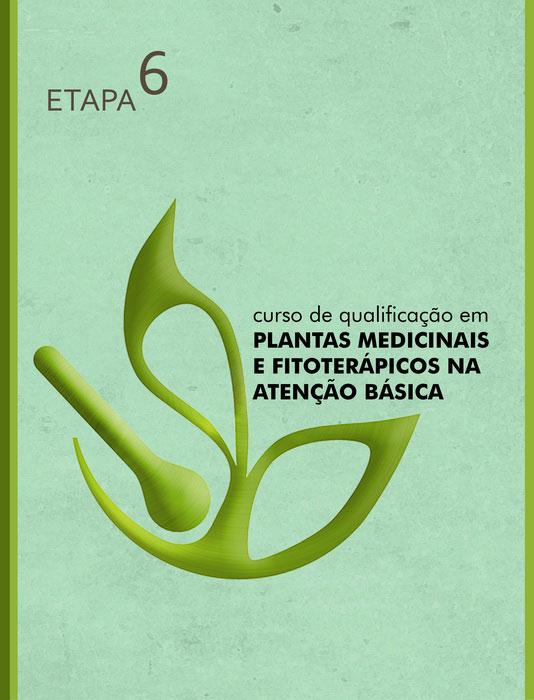 capa ETAPA 6