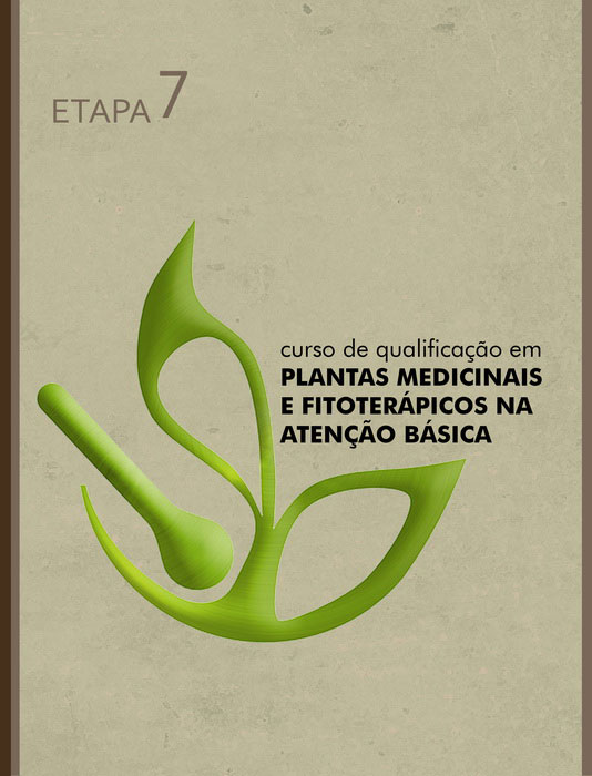 capa ETAPA 7