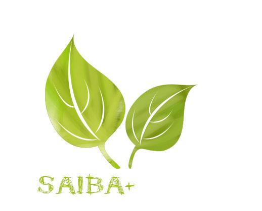 saiba+